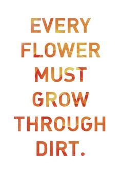 Choose to Blossom
