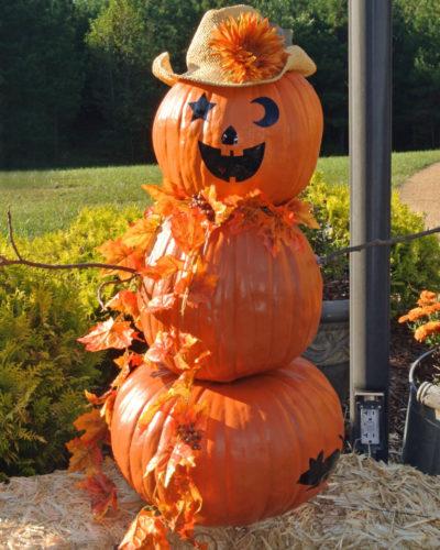 Halloween Pumpkin Party & Craft Ideas