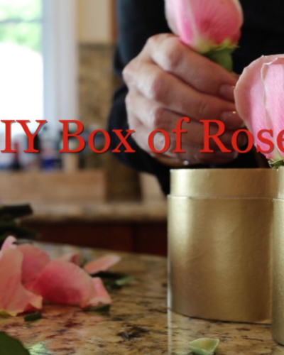 DIY on the FLY Box of Roses